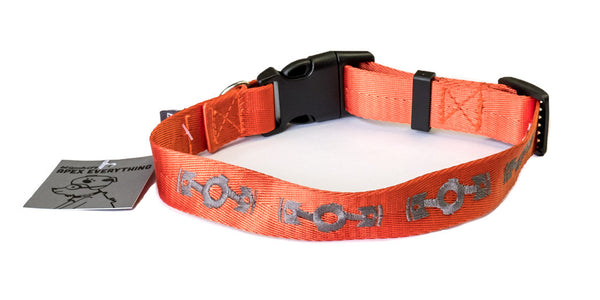Flatspiracy Dog Collar