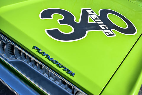 340 Muscle Closeup Desktop