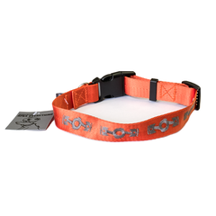 World is Flat Dog Collar
