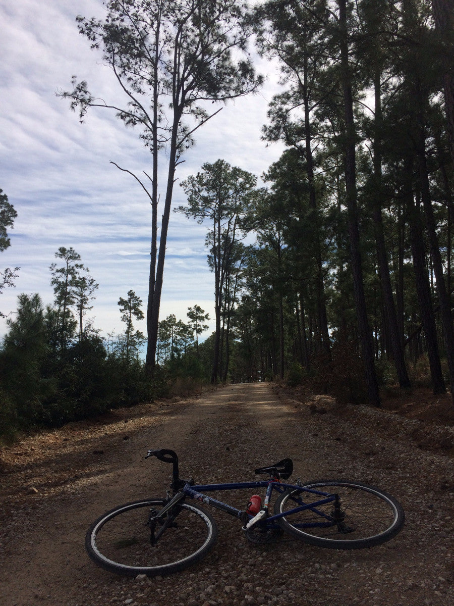Lost_Pines_Single_Origin_Coffee_Grimpeur_Bros_Bike_Pines