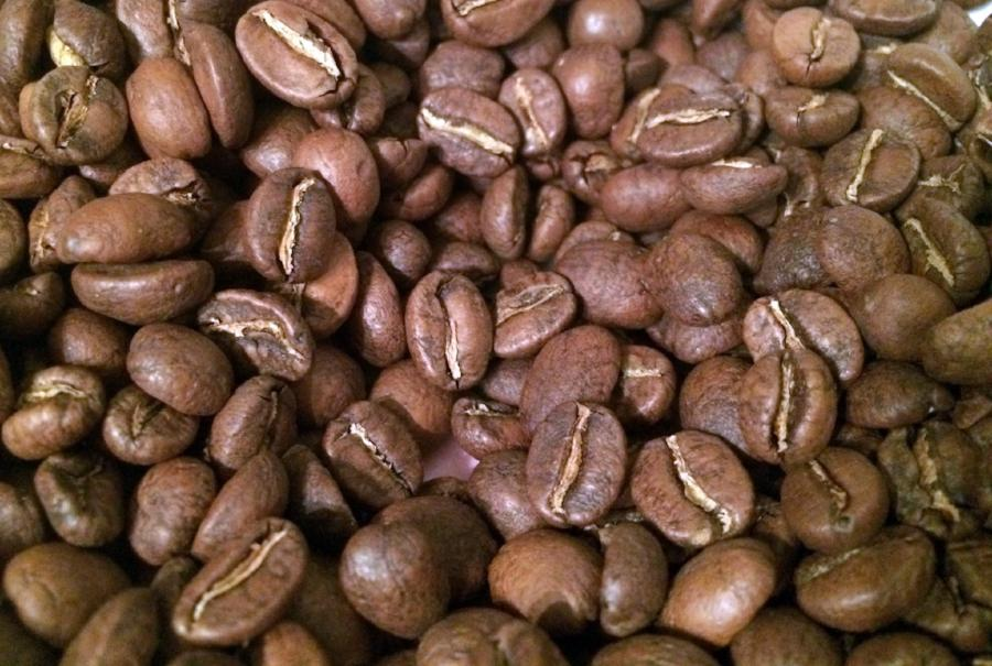 Gravel Grinder Single Origin Coffee