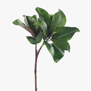 Magnolia Leaf Spray 83cm