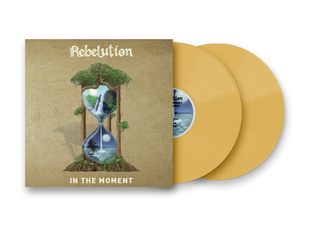 In The Moment Vinyl (Pre-Order)