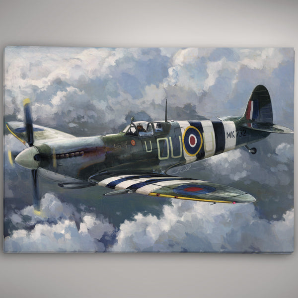 Aviation Painting - Baby Bea