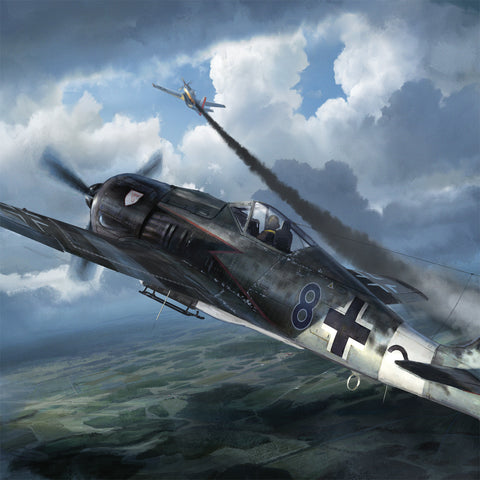 Aviation Painting - FW190 a8 r8 WM German Fighter - Art - The Squawk Shoppe - 1