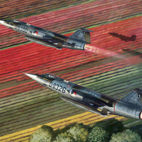 Aviation Painting - F-104 Starfighters over Tulips - Art - The Squawk Shoppe - 1