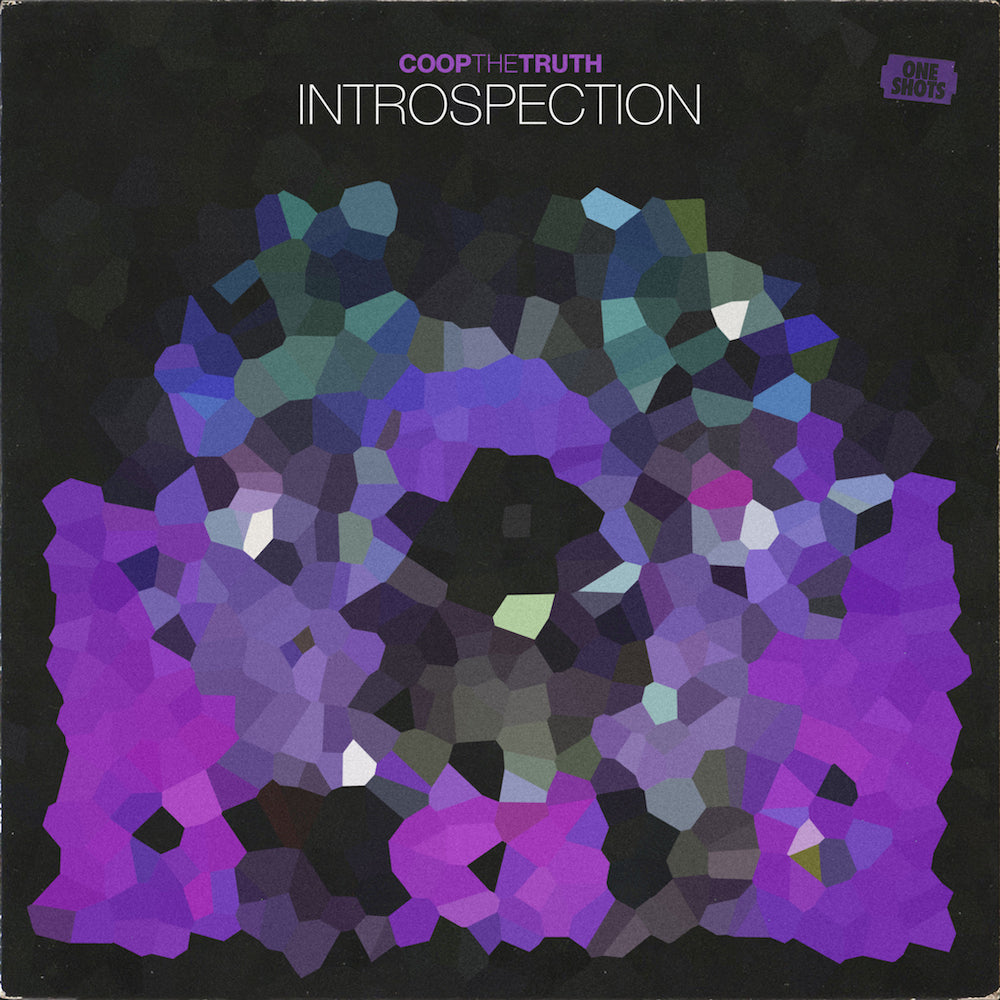 Coop The Truth - INTROSPECTION (One Shots)