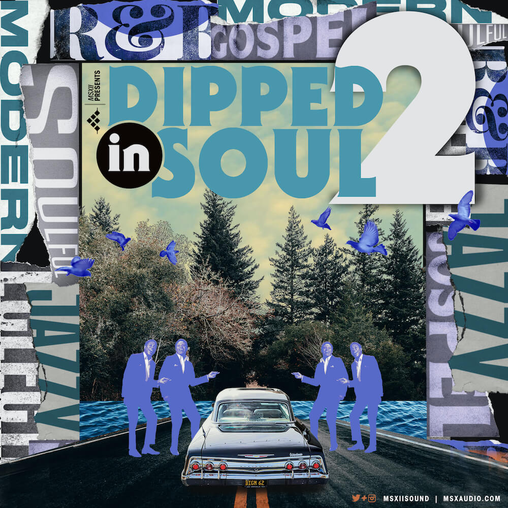 MSXII Sound Design - Dipped in Soul Vol. 2