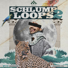 MSXII Sound Design - Schlump Loops Vol. 2