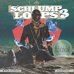 MSXII Sound Design - Schlump Loops Vol. 3
