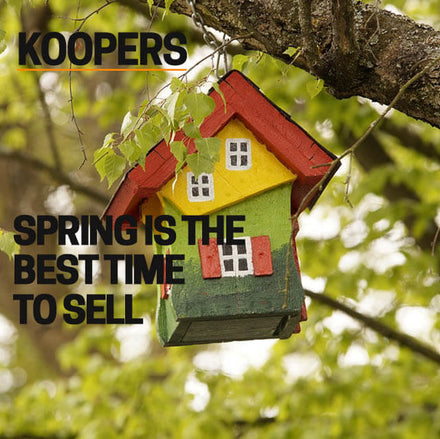 SPRING IS THE BEST TIME TO SELL