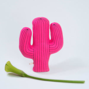 Desert Friend Cactus Felt Plush Toy