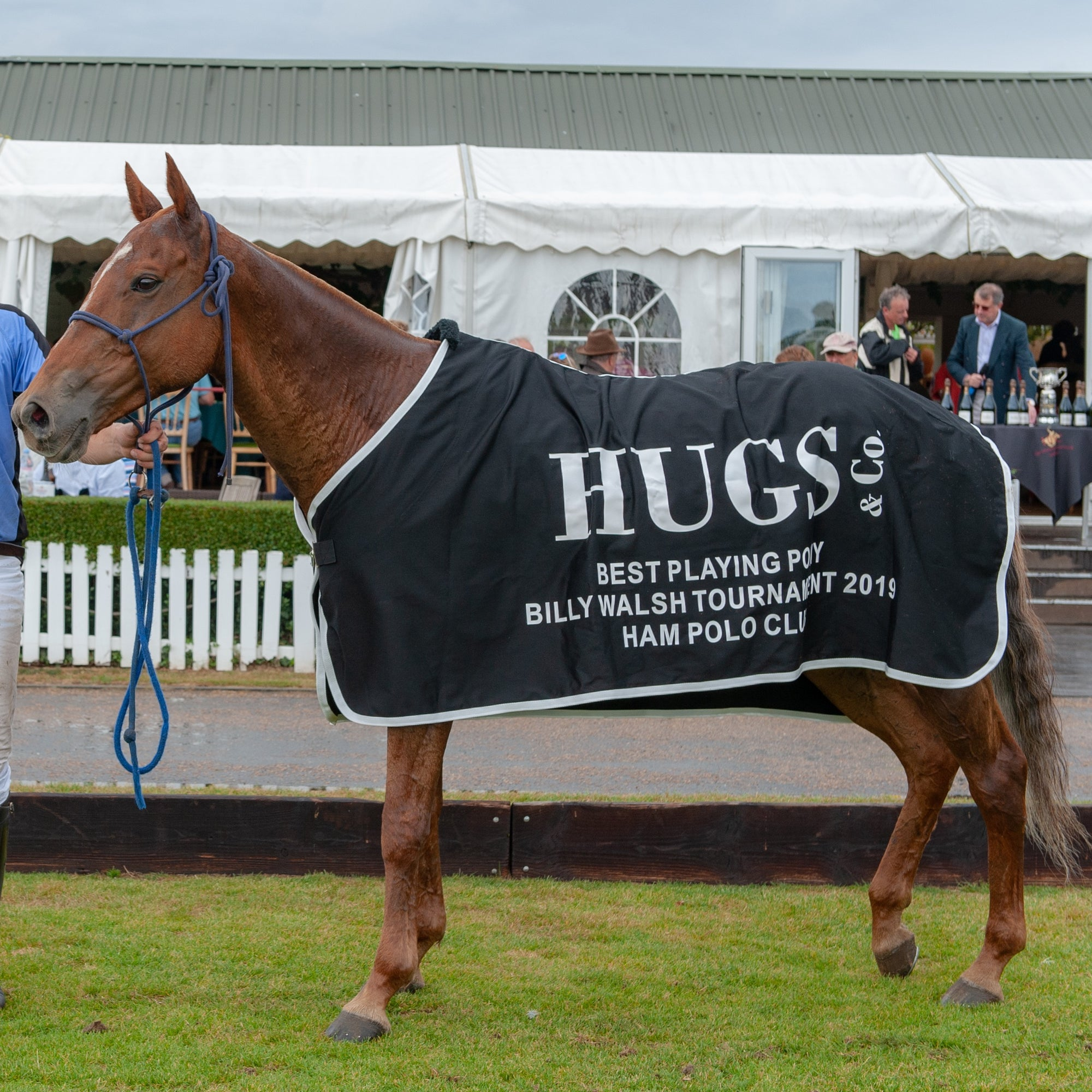 Hugs & Co. Best Playing Pony Award
