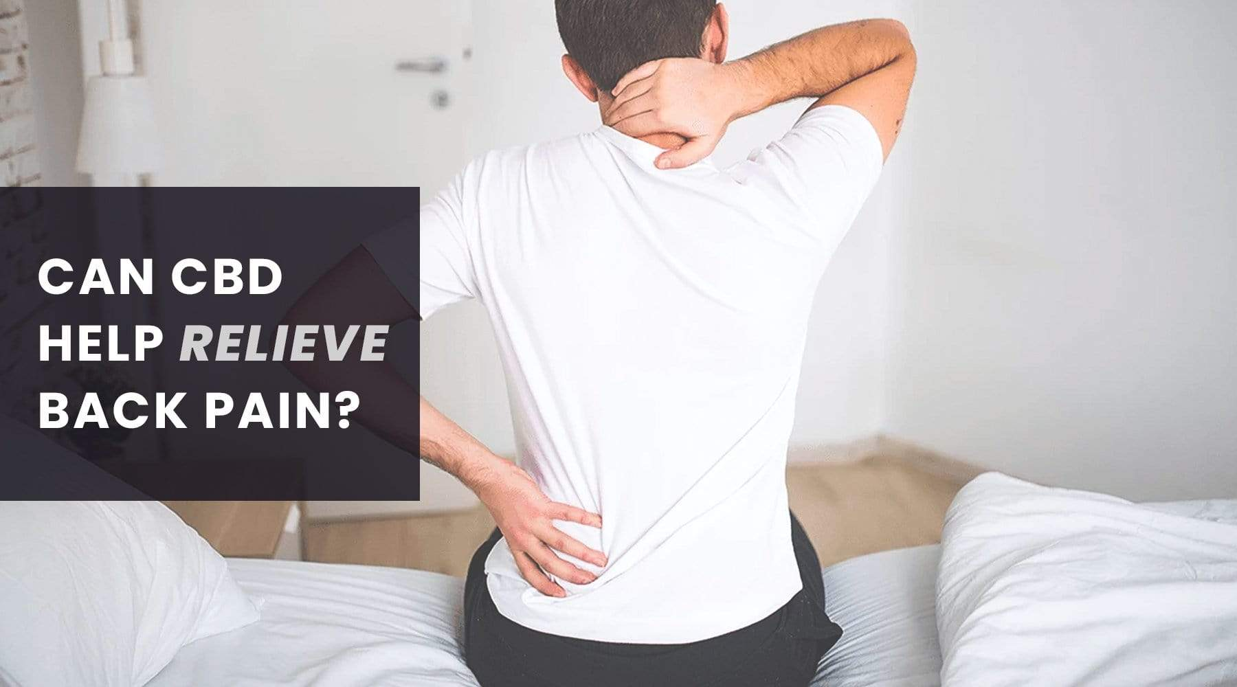 CBD on Pain Management: Back Pain