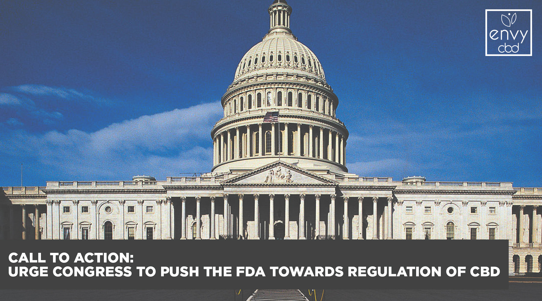CALL TO ACTION: Urge Congress to Push the FDA Towards Regulation of CBD