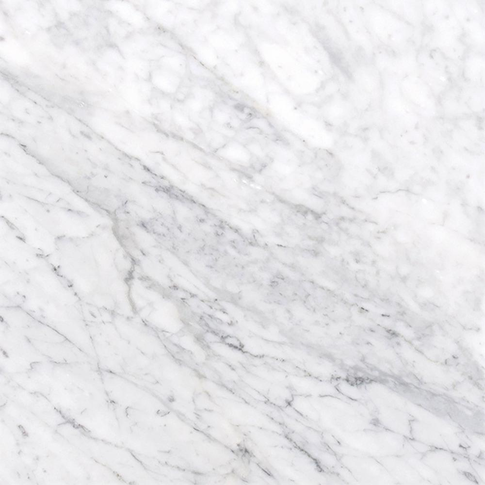 "12"" X 12"" Bianco Carrara White Marble Honed Field Tile - Free Shipping"