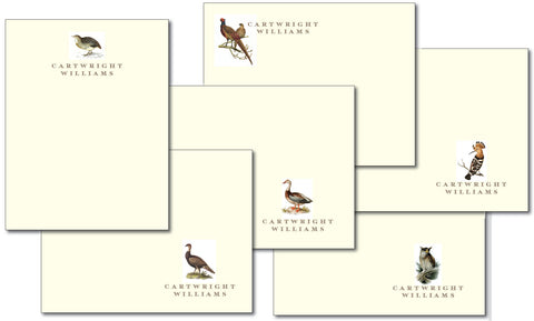 (QTY 24) Woodland Fowl Stationery Notecard - Large set