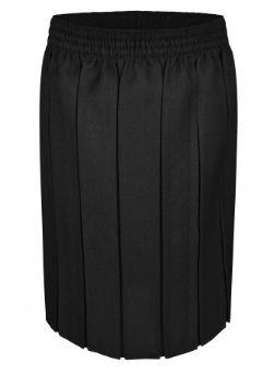 Innovation Box Pleat Skirt