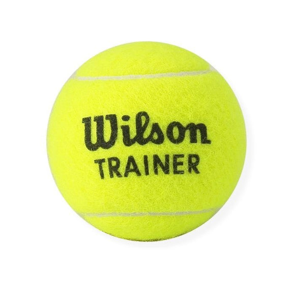 Wilson Training Ball