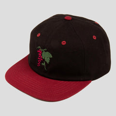 Passport life of leisure snapback cap Burgundy/black