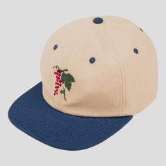 Passport life of leisure snapback cap Royal/Natural