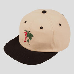 Passport life of leisure snap back cap black/natural