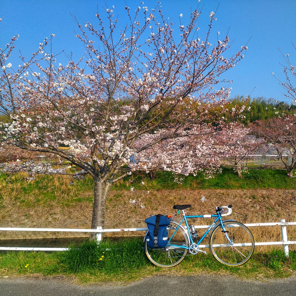 best pannier for cherry blossom viewing
