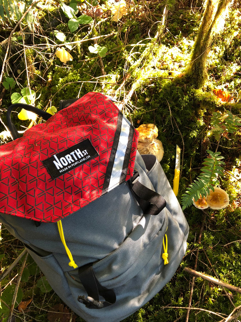 mushroom hunting with a red and grey north st backpack in a forest