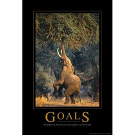 Goals Elephant Motivational Poster - 24x36 - Teacher In Spanish
