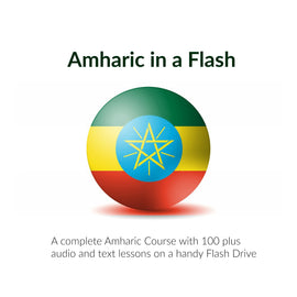Amharic in a Flash