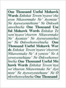 1001 Useful Mohawk Words Dictionary