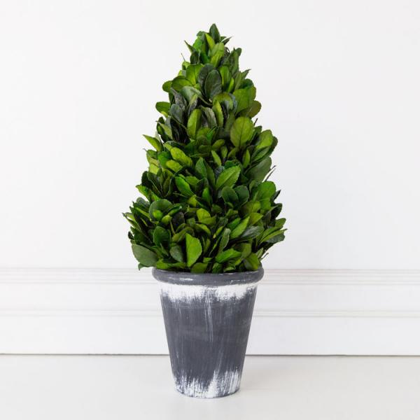 "16.5"" Boxwood Floral Tower -  Green/White/Gray - Bloom'n Things"