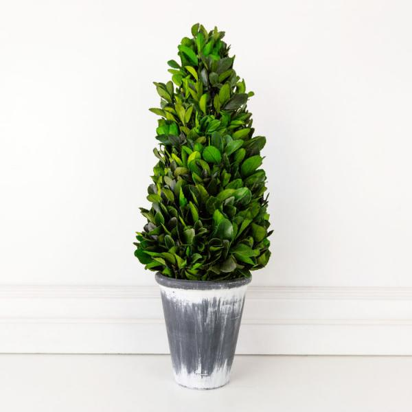 "21"" Big Boxwood Tower, Green/White/Gray - Bloom'n Things (4552967028817)"