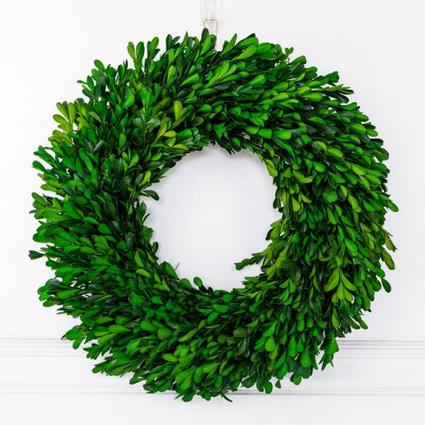 "17"" Boxwood Wreath - Green - Bloom'n Things (4552972304465)"