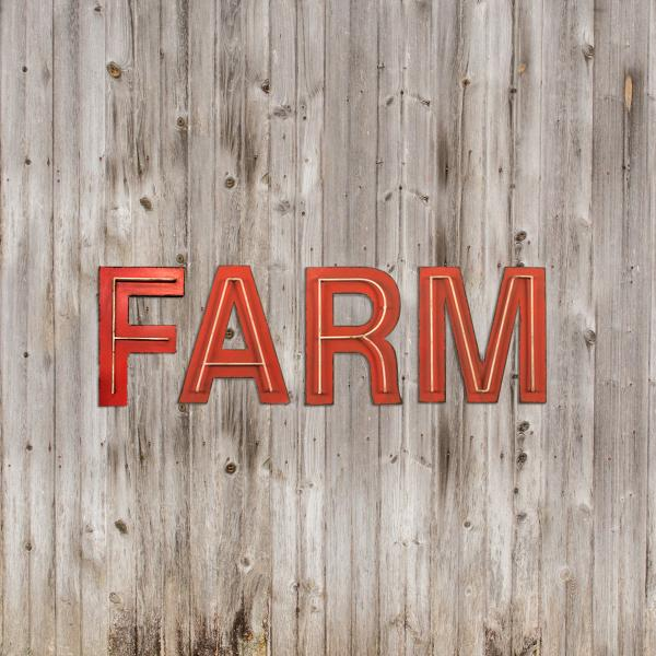 FARM Letter Sign - Individual Letters - Bloom'n Things (10413836873)