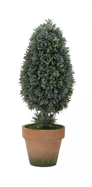 Artificial Cone Shaped Boxwood Plant in Clay Pot - Bloom'n Things, LLC