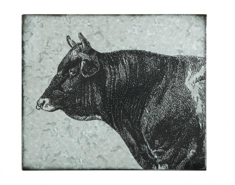 Galvanized Metal Wall Decor w/ Cow - Bloom'n Things (3025280204881)