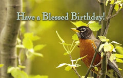 Postcard Have a Blessed Birthday 9935