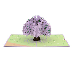 Tarjeta Pop Up Jacaranda Tree