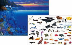 Ocean Scene and Animals