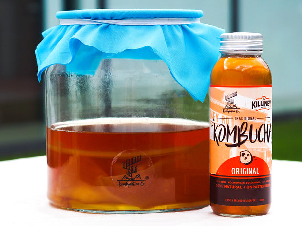 Singapore original kombucha