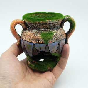 Vase With Moss For Fish Tank