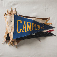 Load image into Gallery viewer, Campus Point Flag