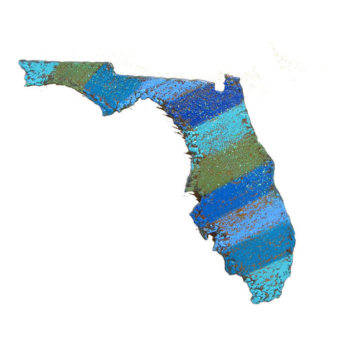 State of Florida Magnet