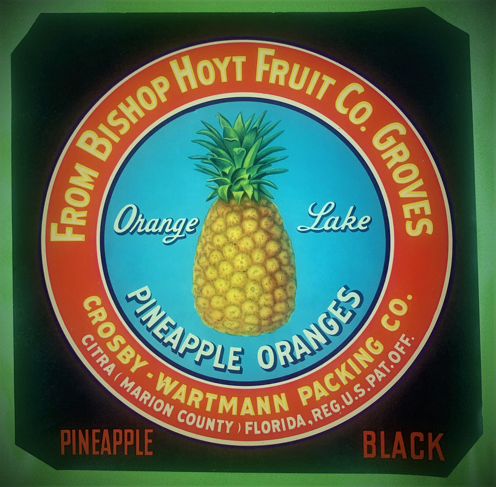 Bishop Hoyt Fruit Co. Groves citrus crate label