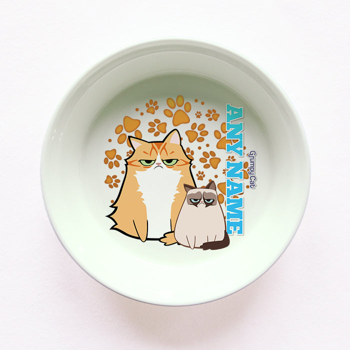 Grumpy Cat Orange Paw Pattern Cat Bowl
