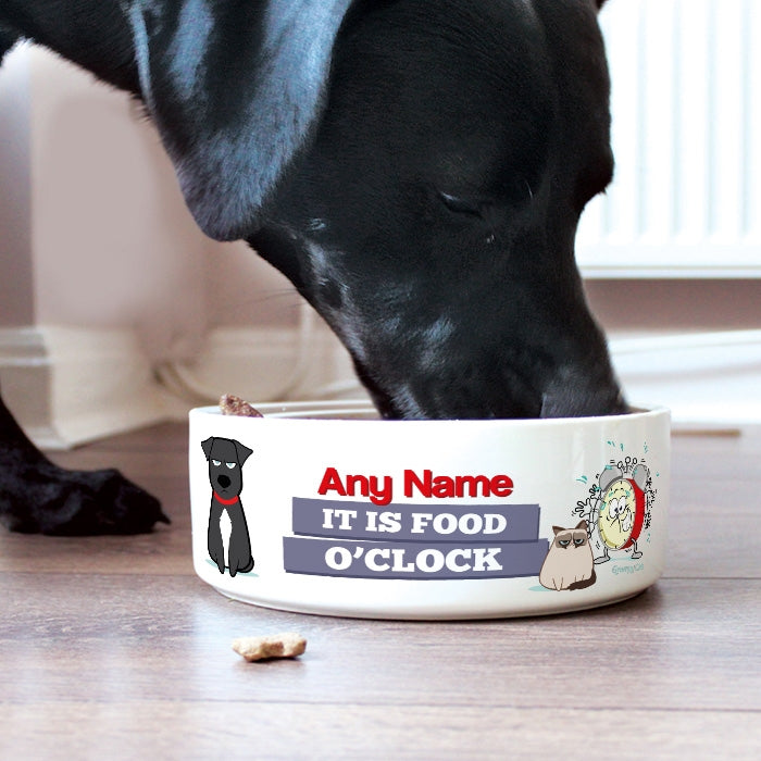 Grumpy Cat Food O'Clock Dog Bowl - Image 1