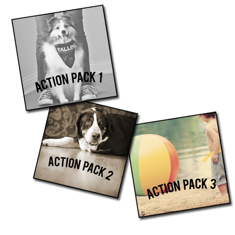 Action Pack 1,2,3
