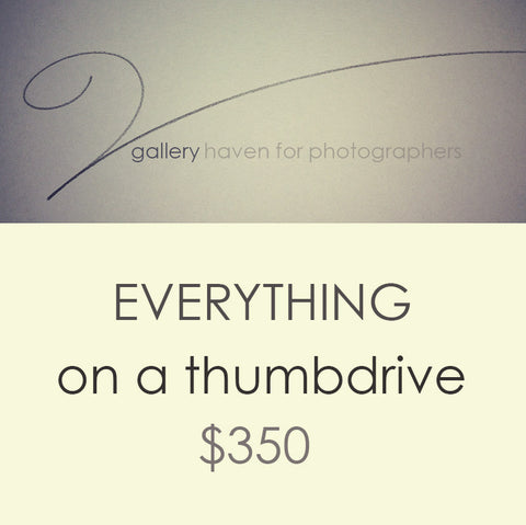 Everything for $350 {Thumbdrive}