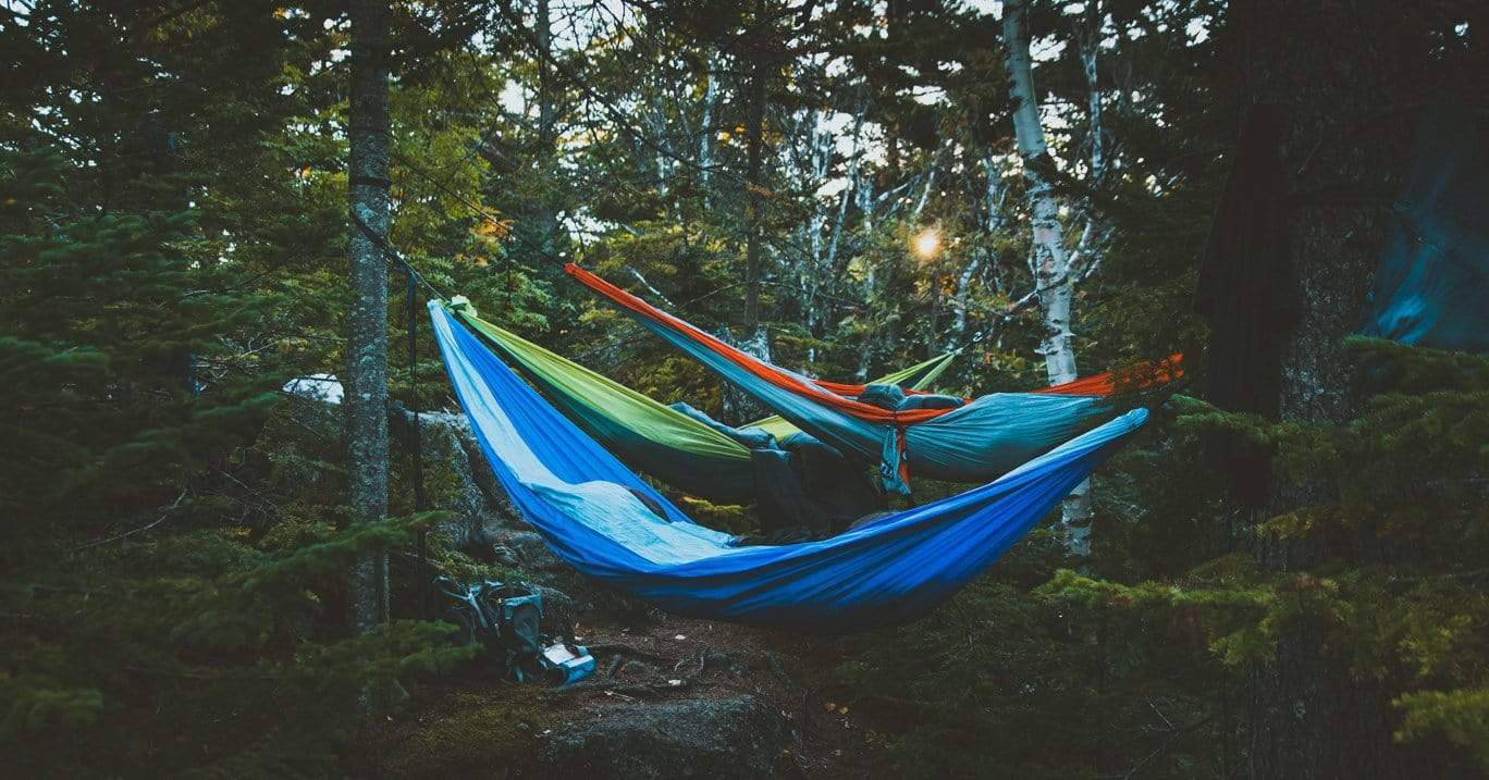 Three colourful camping hammocks hang between trees in a forest with campers sleeping inside them.